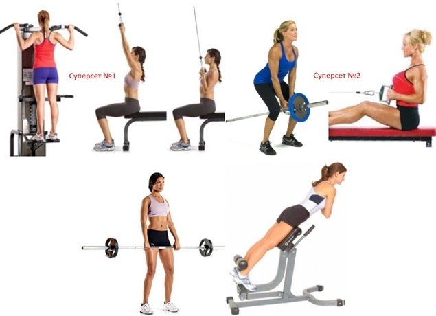 Базовые упражнения в тренажерном зале