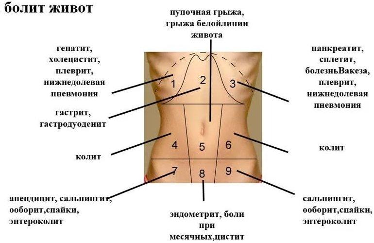 Колит в левом боку под ребрами у беременных 62